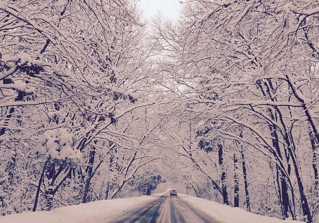 Driving in snow-2361645